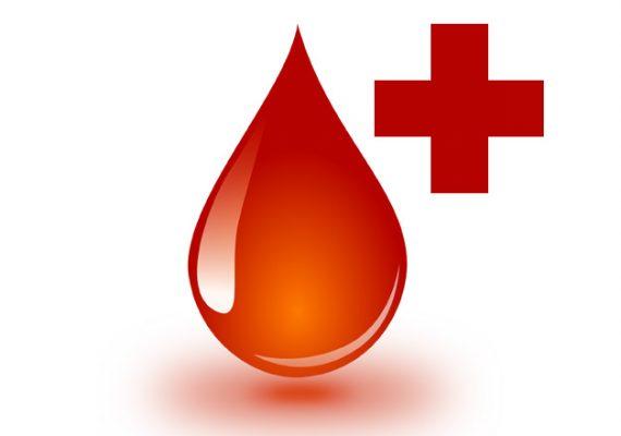 Apel o krew!